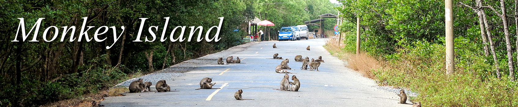 Day Rental: Monkey Island in Can Gio