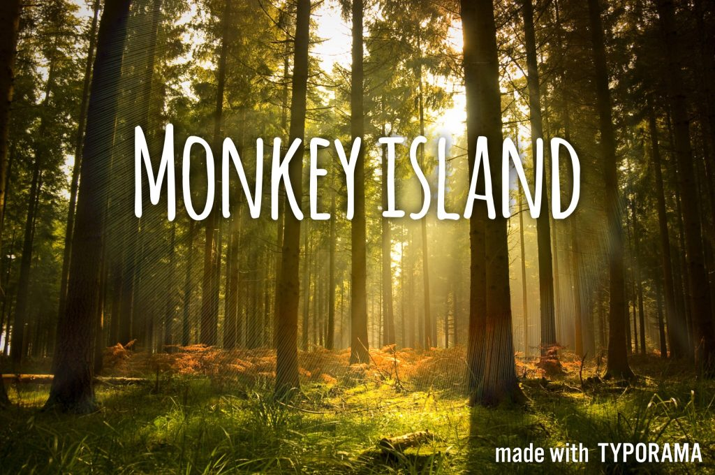 Day Rental: Monkey Island in Can Gio
