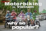 16 Reasons: Why Anyone Can Travel Vietnam by Motorbike