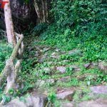Bai Dai Waterfall footpath