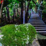 Lien Khuong stair 1