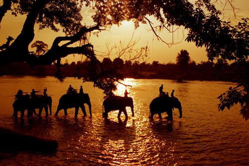 Elephant Ride Don Village