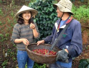 Son Pacamara Farm