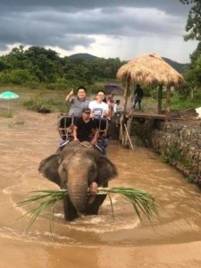 Elephant Rides Buon Ma Thuot