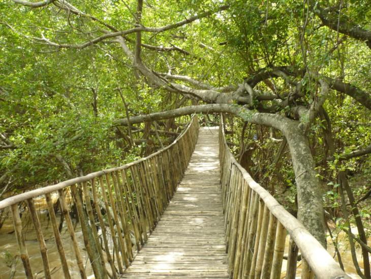 bamboo bridge don village