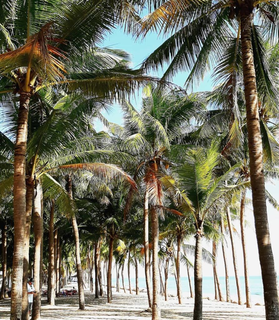 Cua Dai Beach, Hoi An