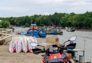 1 Day Cruising Can Gio – Monkey Island & Mangrove Forest