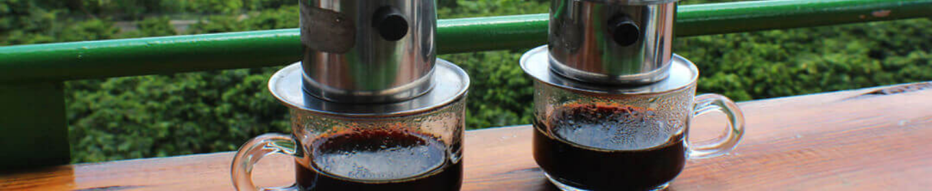 Discovering Coffee Plantations In Vietnam