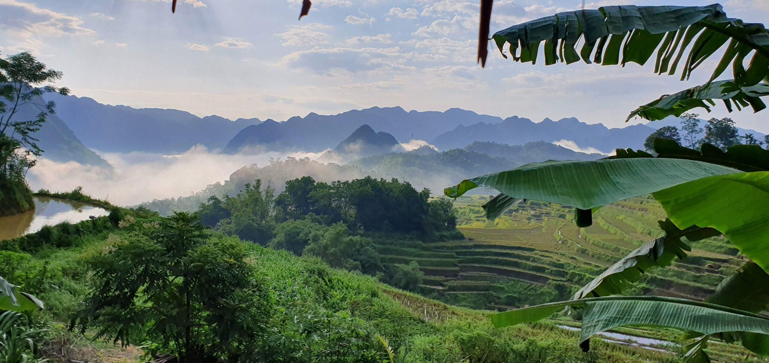 Stunning Pu Luong