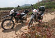 Why the Honda XR 150 is the best motorbike in Vietnam